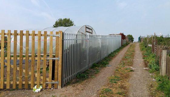 dearne allotment fence